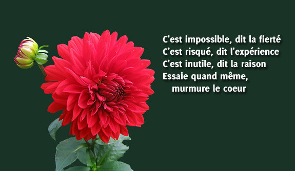 poeme et citation